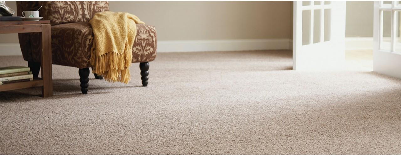 Химчистка ковровых покрытий в Киеве и области с выездом на дом, в офис по всей области