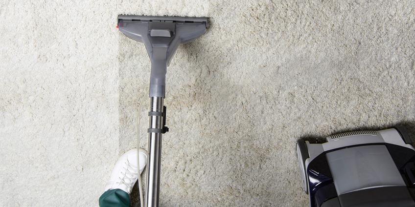 Химчистка ковров на дому. Как и когда нужно чистить.